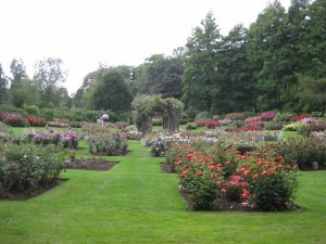 Sir Thomas and Lady Dixon Park - Belfast