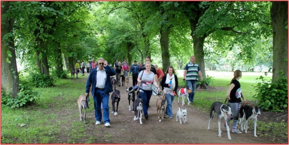 tynemouth great british greyhound walk