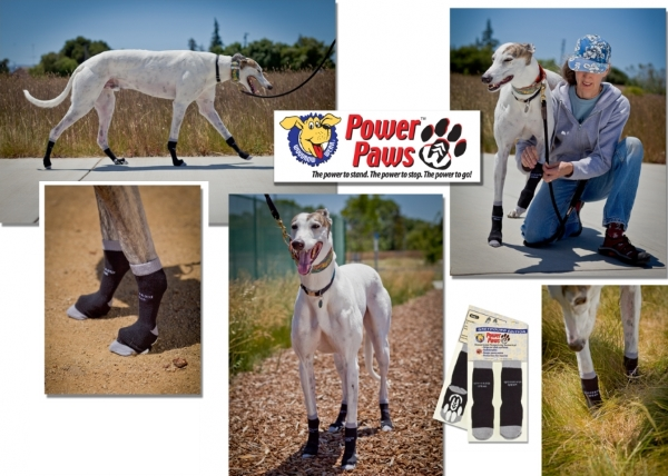 power paws sock for GBGW